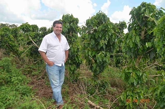 Plantacja kawy wBrazylii – Pan Lopez, właściciel plantacji, przy swoich drzewkach.