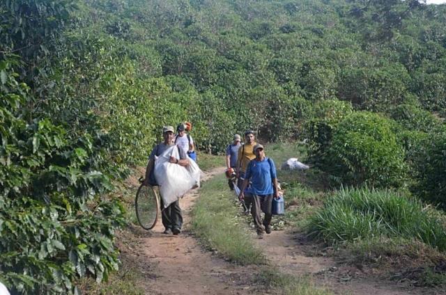 Zbiory kawy wBrazylii – Pozakończonym dniu pracy zbieracze rozchodzą się dodomów.
